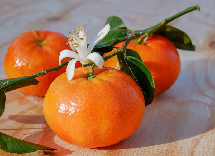 Zdrowa i smaczna żywność ze sklepu bio